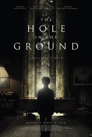 The Hole in the Ground (2019)