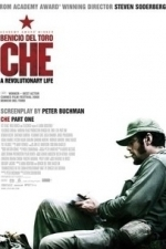 Che: Part One (The Argentine) (2009)