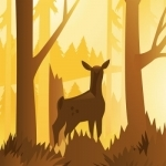 Wildfulness 2 - Nature Sounds for Stress Relief