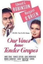 Our Vines Have Tender Grapes (1945)