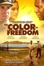 Color of Freedom (2007)