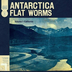 Antarctica by Flat Worms