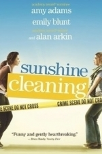 Sunshine Cleaning (2009)