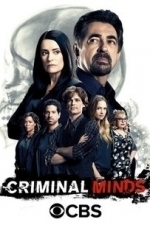 Criminal Minds  - Season 5