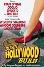 An Alan Smithee Film: Burn, Hollywood, Burn (1998)